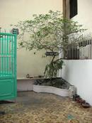 Tp. Hồ Chí Minh: Bán nhà hẻm yên tĩnh, an ninh, mát mẻ CL1066813