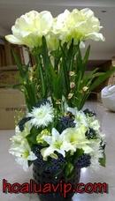 Tp. Hà Nội: hoa lụa đẹp chào năm mới CL1097268P5