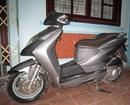 Tp. Hà Nội: ----- Bán Honda Dylan 150cc 2004 50tr. CL1094385P21