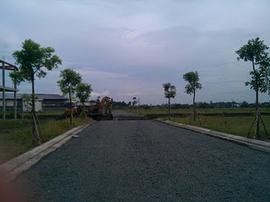 Bán đất nền KDC tại Binh Chánh chỉ hơn 4. 6tr/ nền. Sổ đỏ. đã có dân ở