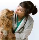 Tp. Hà Nội: Tiêm phòng dại tiêm phòng bệnh cho chó mèo RSCL1089874