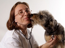 Tp. Hà Nội: Bác sĩ thú y uy t ín ở hà nội CL1109553