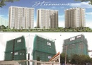 Tp. Hồ Chí Minh: cần bán căn hộ the harmona chiết khấu cao nhất thị trường CL1090682