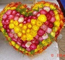 Tp. Hồ Chí Minh: Bán Hoa bất tử, hoa cắm giỏ, hoa bất tử trái tim, hoa bất tử bán sỉ, lẻ CAT2_45