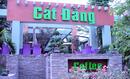 Tp. Hồ Chí Minh: Cà phê Cát Đằng 155B Sự Vạn Hạnh CAT246_256_317