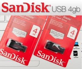 Usb Sandisk 4G