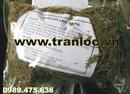 Tp. Hà Nội: Bán trà thảo dược giảo cổ lam tốt cho sức khỏe CL1015280