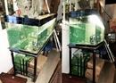 Tp. Hồ Chí Minh: Hồ 1. 2M (120x42x52)cm, kính 5mm đáy 8mm + Chân đế + Hộp đèn = 300K CL1218505