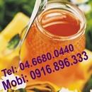 Tp. Hà Nội: mật ong rừng nguyên chất ,liên hệ 0916896333 CL1124151P10