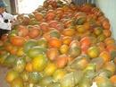 Tp. Hồ Chí Minh: Cần bán các sản phẩm từ gấc - chế biến thực phẩm. .. CL1114194P11