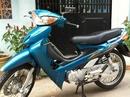 Tp. Hồ Chí Minh: Cần bán xe futrure nhật màu xanh CL1103014