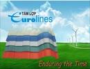 Nghệ An: Tấm lợp Eurolines siêu bền, chống nóng, chống ồn, chống ăn mòn hóa chất CL1107410