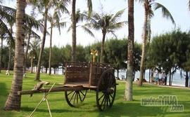 Khuyến mãi cực shock, giảm giá 20% đặt phòng khách sạn ở Bãi Lữ Resort