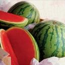 Tp. Hà Nội: Order trái cây sạch nào: Bán Thanh Long ruột đỏ, dưa hấu không hạt - freeship. CL1111008