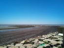Tp. Hồ Chí Minh: Chuyên cung cấp cát san lấp số lượng lớn!! CL1026032