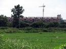 Tp. Hồ Chí Minh: Đất nền trên quốc lộ 50 CL1114197