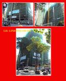 Tp. Hồ Chí Minh: Bán căn hộc cc Nguyễn Chí Thanh giá hấp dẫn DT 60m2, 1,5 tỷ/ căn chiết khấu 15% CL1118160