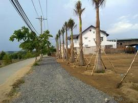 Bán đất nền sổ đỏ khu Nam Sài Gòn DT 200m2, 10tr/ m2 có thể xây nhà ở hoặc xưởng