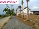 Tp. Hồ Chí Minh: Mở bán đất nền giá rẻ Bình Chánh - 326tr/ nền liền kề Q5, Q8 CL1118014