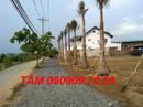 Tp. Hồ Chí Minh: bán đất giá chỉ 326tr/ nền gần khu dân cư gia hòa bình chánh CL1109506