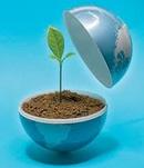Tp. Hồ Chí Minh: Đăng ký giấy cam kết môi trường CL1115253