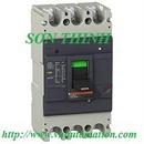 Tp. Hà Nội: Aptomat 3P 80A 10kA - Easypact EZC100F3080, Aptomat, MCB, MCCB Schneider CL1119410