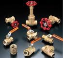 Tp. Hà Nội: van cầu đồng của kitz, van cầu hơi lắp ren, van class 150, globe valve CL1110042