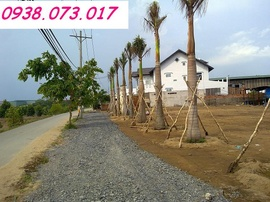 Bán đất nền gần cầu Ông Thìn Bình Chánh - 326tr + CK 10%