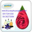 Tp. Hà Nội: Bán các loại tinh dầu và đèn xông hương dien102 CL1134809