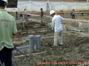Tp. Hồ Chí Minh: Dịch vụ phòng chống mối công trình xây dựng CL1213257P6