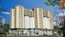 Tp. Hồ Chí Minh: Căn hộ Ruby land giá chỉ 15 triệu/ m2 bao VAT kèm nội thất CL1124742