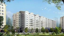 Tìm nhà mua sỉ căn hộ Ehome Tây Sài Gòn . Chính chủ đầu tư Nam Long mở bán