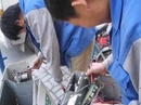 Tp. Hồ Chí Minh: sửa lò vi sóng tại nhà. .0978 300 334-0949 470 774. CL1137988