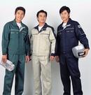 Tp. Hà Nội: Đồng phục lao động Xuân thủy CUS13438