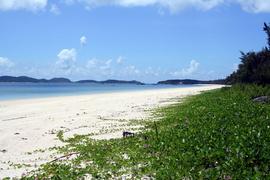 Hồng Vàn Beach
