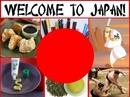 Tp. Hà Nội: Du lịch Nhật- Tokyo – Osaka 6 ngày giá rẻ nhất 2012, 2013 CL1160341P8