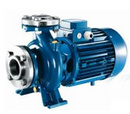 Tp. Hà Nội: 0983480896 - Nhà cung cấp máy bơm nước trục ngang Pentax CM32-160C CL1147673