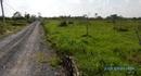 Tp. Hồ Chí Minh: cần sang nhượng đất vườn Bình Mỹ, Củ Chi, giá từ 195tr/ 1000m2 CL1045812P4