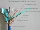 Tp. Hà Nội: AETEL PP Cáp mạng Golden Link bọc kim, chống nhiễu mầu đẹp giá tốt có CL1157381