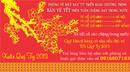Tp. Hồ Chí Minh: Vé máy bay tết quý tỵ 2013 CL1164790