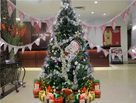 Nhận trang trí noel, giáng sinh - noel 2012 tại TP. HCM