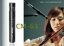 Tp. Hồ Chí Minh: Chuyên Micro chơi nhạc cụ Piano, Trống Cajon, Micro kéo Violon CL1110777