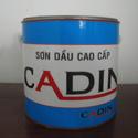 Tp. Hồ Chí Minh: Những sản phẩm SƠN CADIN cao cấp son dau, son nuoc, son epoxy CL1163485P9