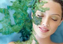 Tảo Spirulina Sản phẩm bồi bổ sức khỏe hoàn hảo