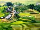 Tp. Hà Nội: Du Lịch Sapa- Hà Khẩu 4 ngày giá rẻ nhất tết, 2012, 2013 CL1150359