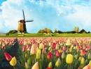 Tp. Hà Nội: Du lịch Châu Âu Siêu Khuyến Mại 2012 CL1150359