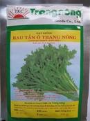 Tp. Hồ Chí Minh: Hạt giống Tần ô CL1164088