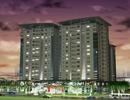 Tp. Hồ Chí Minh: Mở bán căn hộ lucky apartment Tân Phú CL1166022