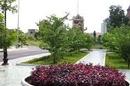 Tp. Hồ Chí Minh: Đất Bình Dương giá rẻ 150tr/ nền 150m2 sổ hồng 2012, liền kề công viên CL1166668