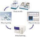 Tp. Hà Nội: Hệ thống phát hiện các nhân tố gây mất an toàn thực phẩm CapitalBio CL1171917